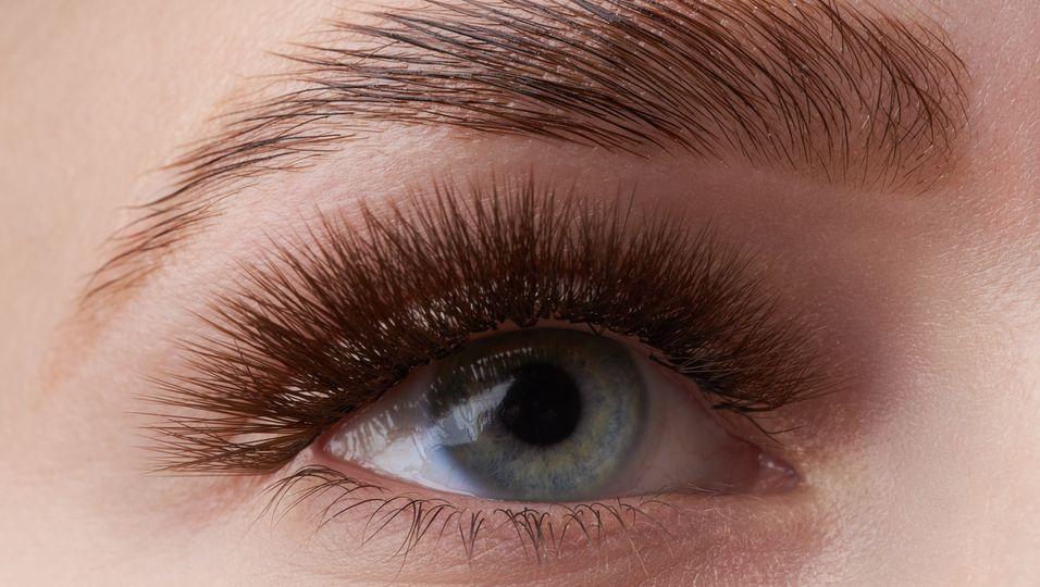 Augenbraue