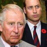 Prinz Charles und Prinz William