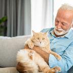 Mann und Katze
