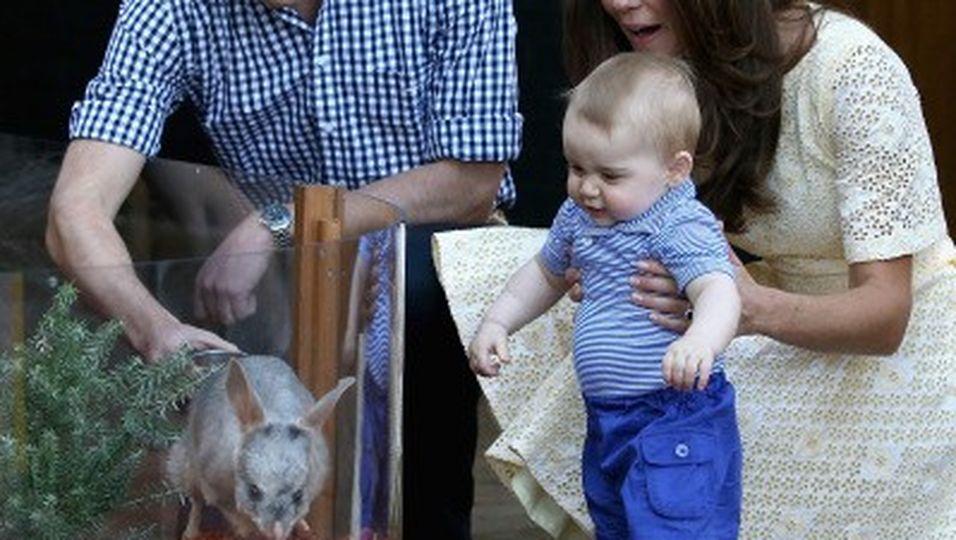 Niedliche Begegnung im Zoo