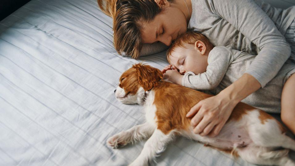 Hundenamen, Babynamen, Baby Vornamen
