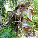 Wie wäre es mit einer Übernachtung im Baumhaus? In Miami ist das jetzt möglich.