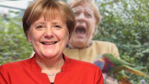 Merkel im Vogelpark: So hat man die Bundeskanzlerin selten gesehen