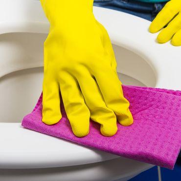 Toilette putzen, Kalkablagerungen entfernen, Haushaltstipps
