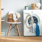 Waschnüsse Waschkastanien Stiftung Warentest