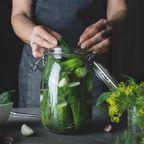 fermentieren Gurke Frau