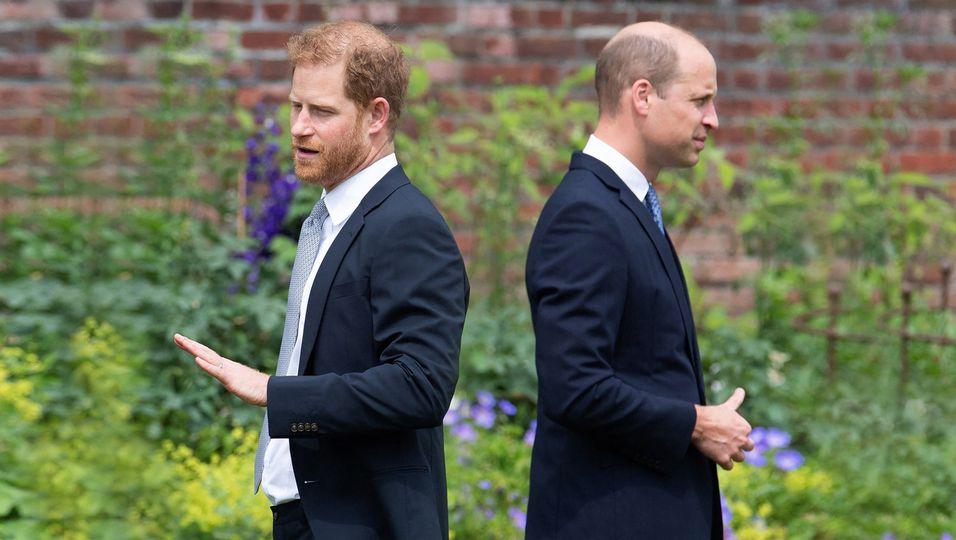 Flucht nach 20 Minuten: Prinz Harry ließ seinen Bruder nach Diana-Gedenken stehen