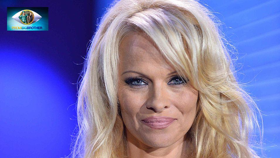 Pamela Anderson Promi Big Brother
