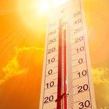 Temperaturrekord: Juli 2019 ist der weltweit heißeste Monat