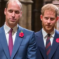 Prinz William & Prinz Harry: Für den guten Zweck finden sie wieder zusammen!