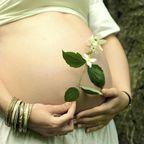 Für Schwangere sind nicht alle Kräuter und Gewürze gut!