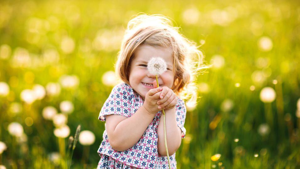 Kind Wiese Pollenallergie Pusteblume