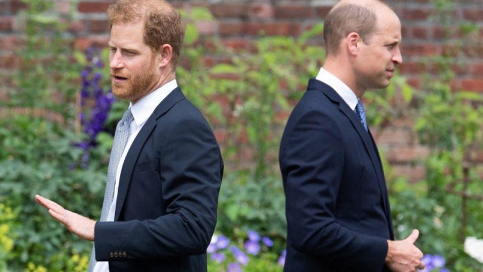 Expertin glaubt zu wissen, warum es wirklich zum Bruch zwischen Harry und William kam