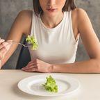 Diät Low Carb Kalorienzählen