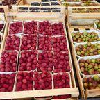 Gut fürs Klima: Dieses Obst schadet unserer Umwelt am wenigsten