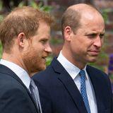 Prinz Harry & Prinz Willian