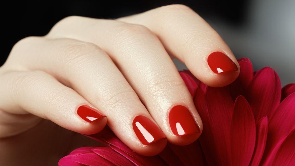 Frauenhand mit roten Nägeln greift rote Rose
