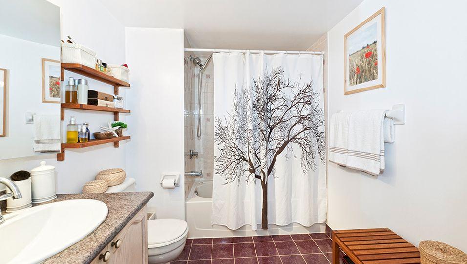 Duschvorhang reinigen   So bleibt er lange schön