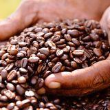 fair-trade-anzeige.jpg