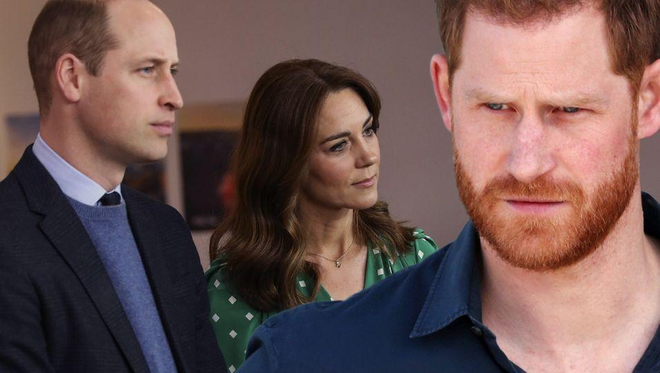 """Experte: """"Harry schießt gegen William und Kate"""""""