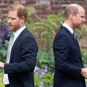 """Prinz William & Prinz Harry: """"Tiefen der Traurigkeit"""": Experte über die Zukunft der entzweiten Brüder"""