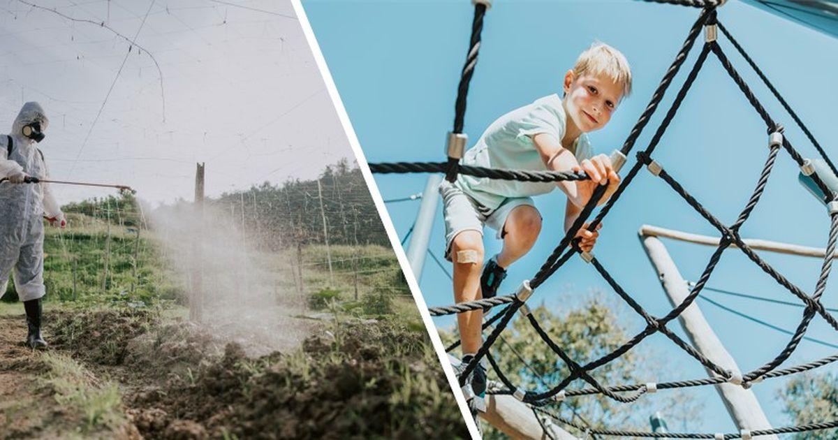 Ab August: Kinderfreizeitbonus, Schule, Corona: Das ändert sich jetzt für Sie