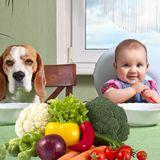 Kleines Kind isst monatelang kein Gemüse - Dann kam Hund Brick zur Hilfe