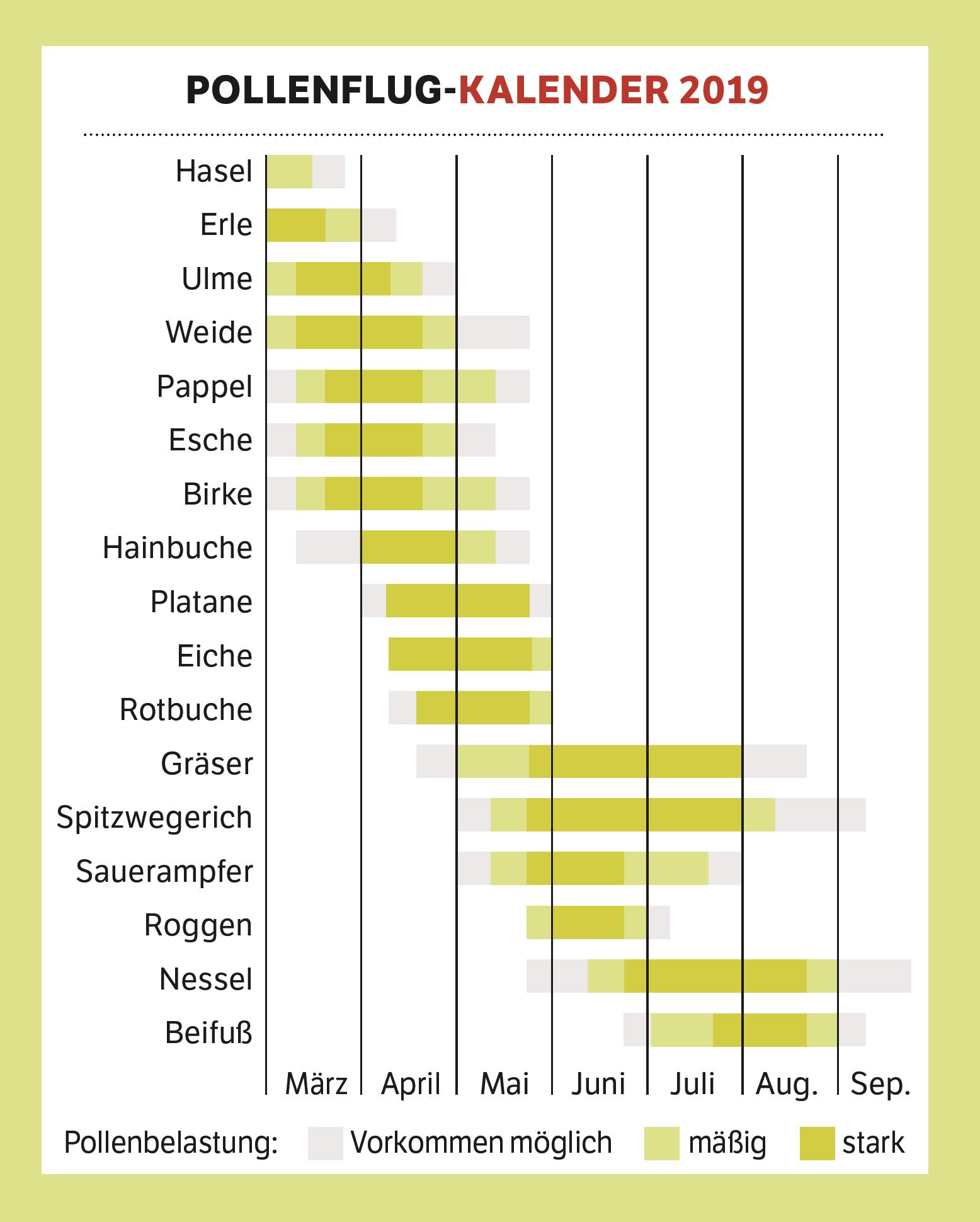 Allergiekalender: Wann Fliegen welche Pollen?